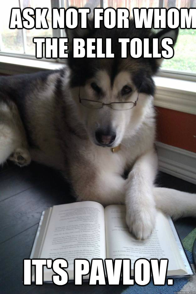 Ask not for whom the bell tolls It's Pavlov. - Ask not for whom the bell tolls It's Pavlov.  Condescending Literary Pun Dog