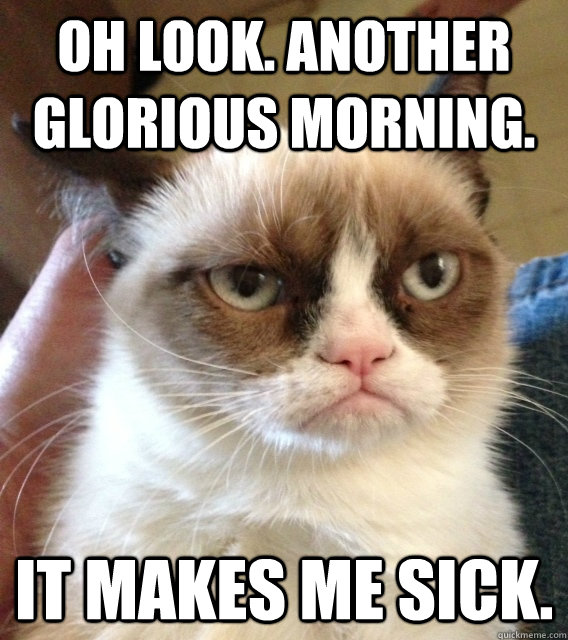 Oh look. Another glorious morning. It makes me sick. - Oh look. Another glorious morning. It makes me sick.  Not Amused Grumpy Cat