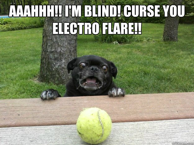 AAAHHH!! I'm Blind! CURSE YOU  Electro Flare!!   Berks Dog