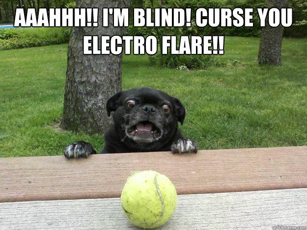 AAAHHH!! I'm Blind! CURSE YOU  Electro Flare!!