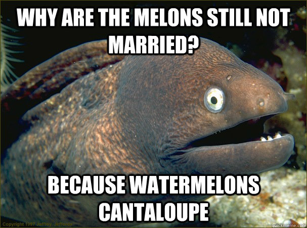 Why are the Melons still not married? Because watermelons cantaloupe - Why are the Melons still not married? Because watermelons cantaloupe  Bad Joke Eel
