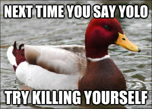 Next time you say yolo try killing yourself - Next time you say yolo try killing yourself  Malicious Advice Mallard