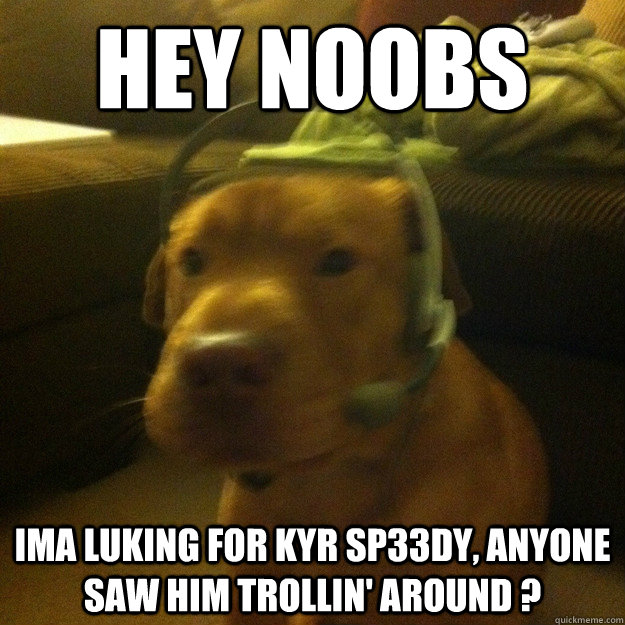hey noobs ima luking for KYR SP33Dy, anyone  saw him trollin' around ?