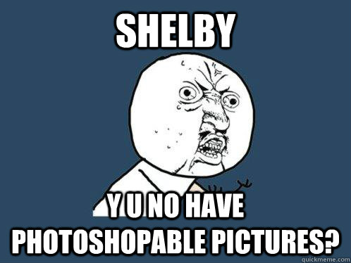 shelby y u no have photoshopable pictures? - shelby y u no have photoshopable pictures?  Y U No