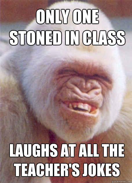laughs at all the teacher's jokes Only one stoned in class - laughs at all the teacher's jokes Only one stoned in class  Misc