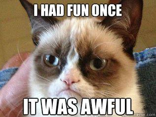 grumpy cat meme célèbre de la chatte