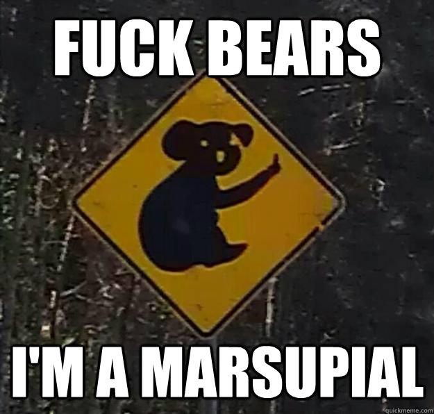 fuck bears i'm a marsupial