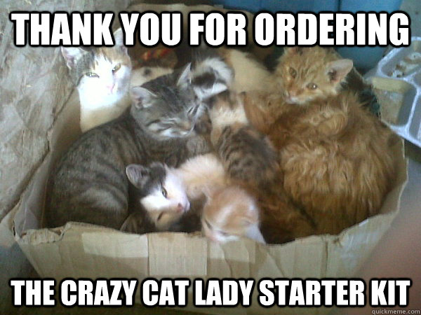 Thank you for ordering The Crazy cat lady starter kit - Thank you for ordering The Crazy cat lady starter kit  Misc