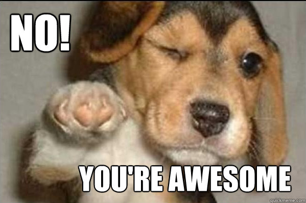 No! You're Awesome - No! You're Awesome  Misc