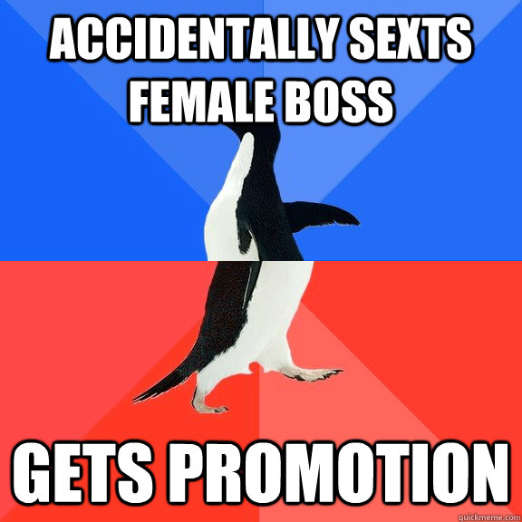 accidentally sexts female boss gets promotion - accidentally sexts female boss gets promotion  Socially Awkward Awesome Penguin