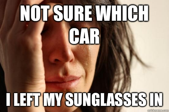 Not sure which car I left my sunglasses in - Not sure which car I left my sunglasses in  First World Problems