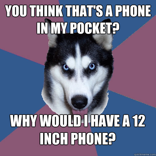you think that's a phone in my pocket? why would i have a 12 inch phone?  Creeper Canine