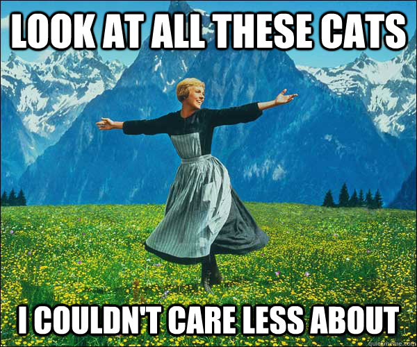 look at all these Cats I couldn't care less about - look at all these Cats I couldn't care less about  Sound of Music