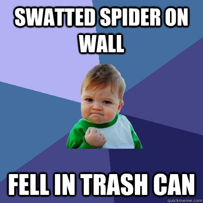 swatted spider on wall fell in trash can  Success Kid