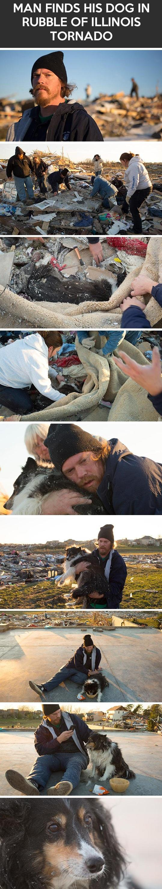 Man Finds His Dog In The Rubble Of Illinois Tornado. Here Is How The Reunion Went... -   Misc