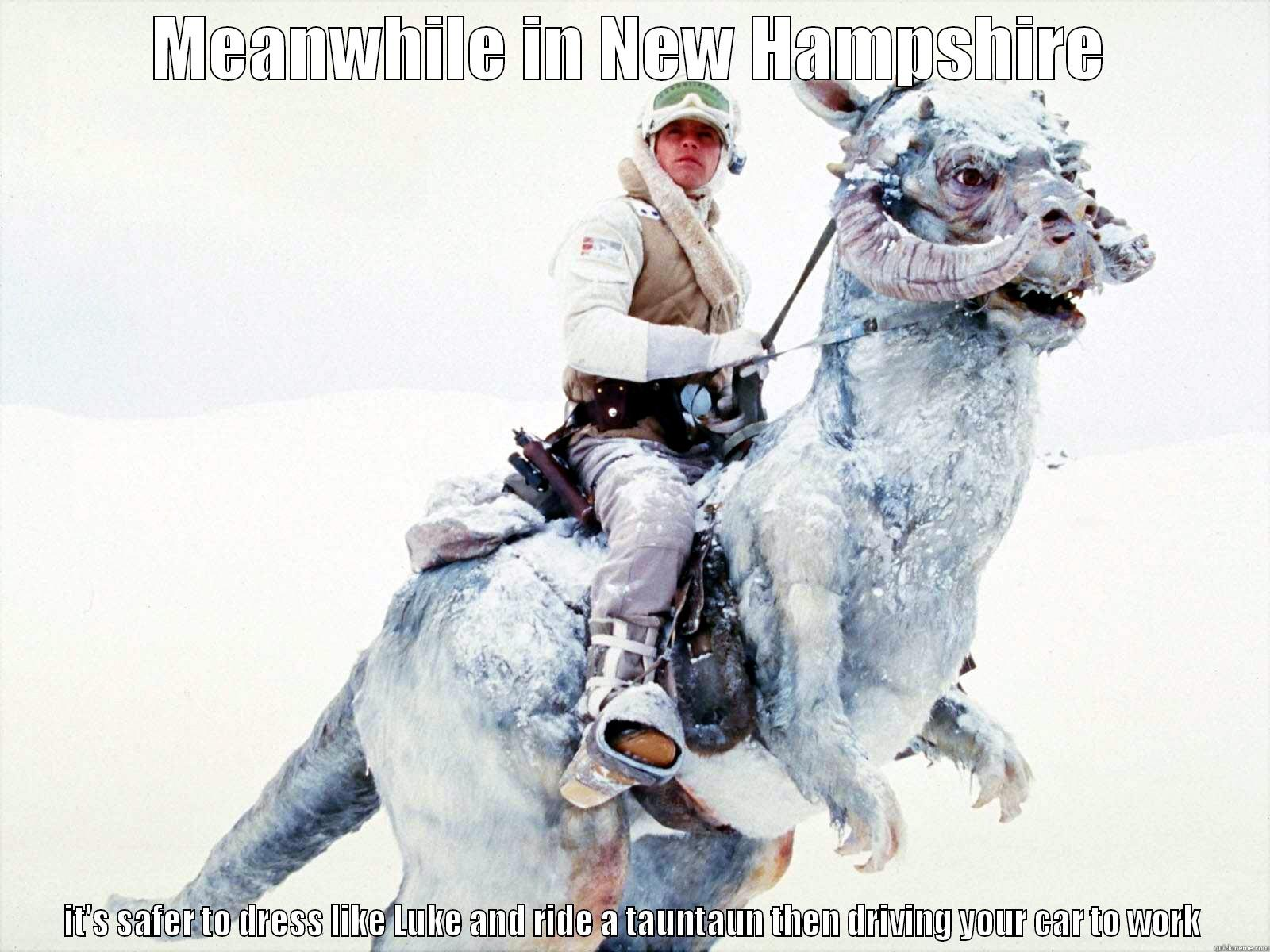 tauntaun 2 - MEANWHILE IN NEW HAMPSHIRE IT'S SAFER TO DRESS LIKE LUKE AND RIDE A TAUNTAUN THEN DRIVING YOUR CAR TO WORK Misc
