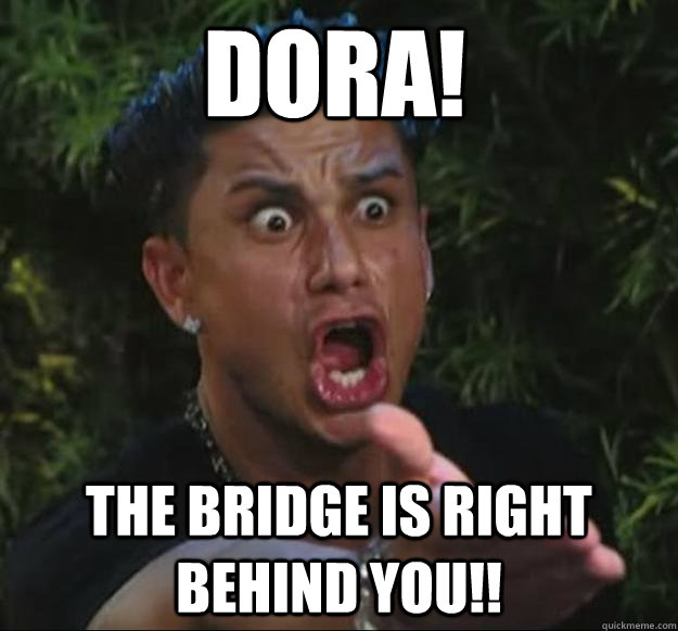 DORA! THE BRIDGE IS RIGHT BEHIND YOU!!