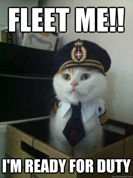 Fleet me!! I'm ready for duty - Fleet me!! I'm ready for duty  Captain kitteh