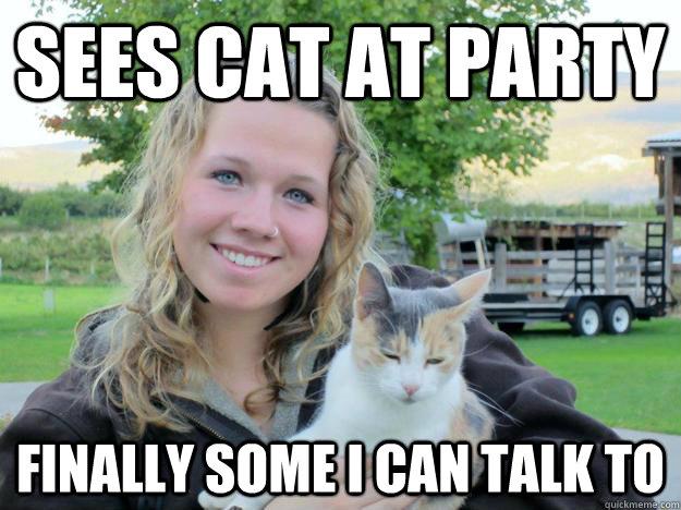934db81b10826287303c356910117ef0e21b5f48a7b1bba4a8d99e31efbdf822 crazy cat lady memes quickmeme