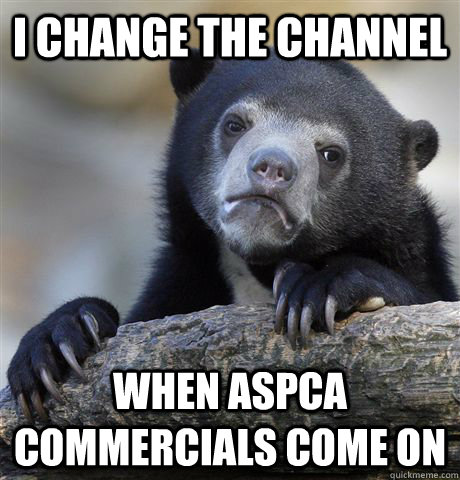 I Change the channel when aspca commercials come on - I Change the channel when aspca commercials come on  Confession Bear