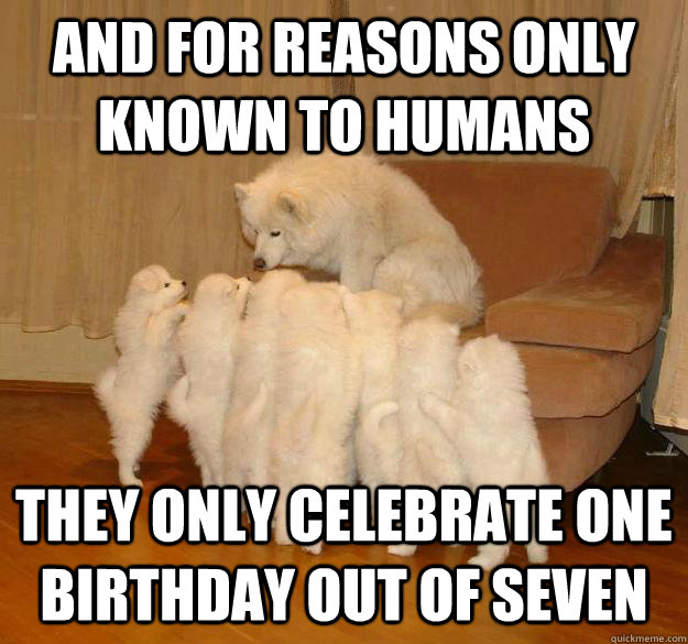 and for reasons only known to humans they only celebrate one birthday out of seven - and for reasons only known to humans they only celebrate one birthday out of seven  Misc