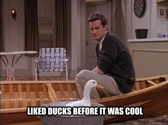 Liked ducks before it was cool - Liked ducks before it was cool  hipster chandler