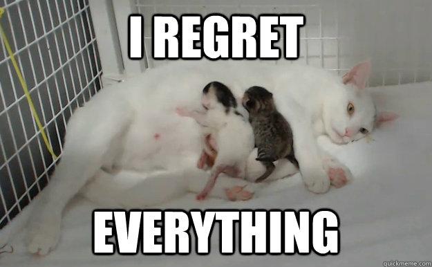 I regret Everything - I regret Everything  Remorseful Mother