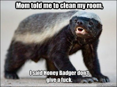 Mom told me to clean my room, I said Honey Badger don't  give a fuck.  Honey Badger