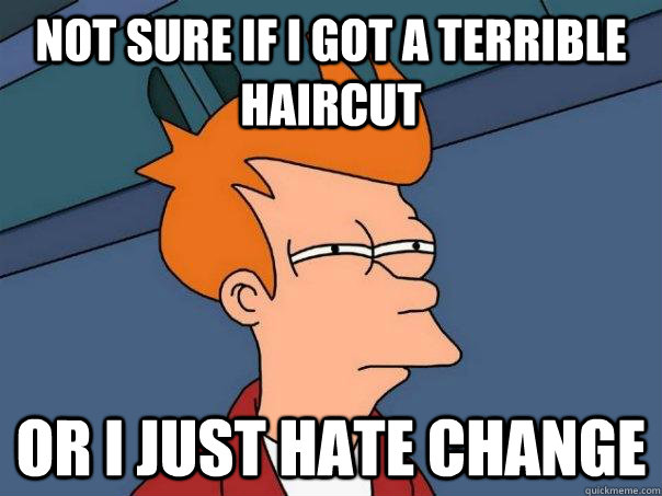 Not sure if i got a terrible haircut Or i just hate change - Not sure if i got a terrible haircut Or i just hate change  Futurama Fry