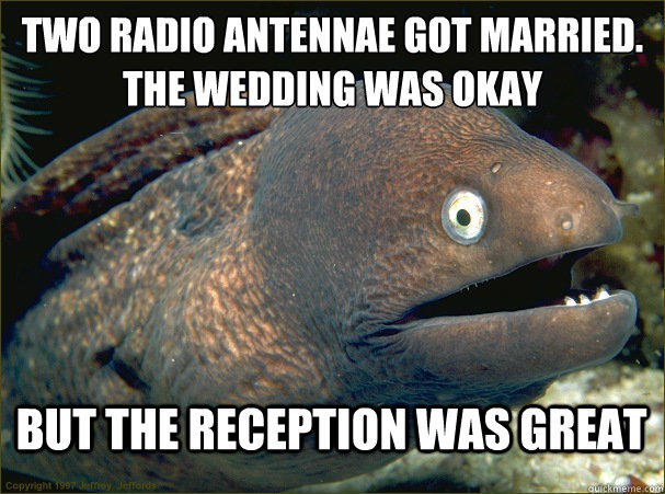 two radio antennae got married. the wedding was okay but the reception was great
