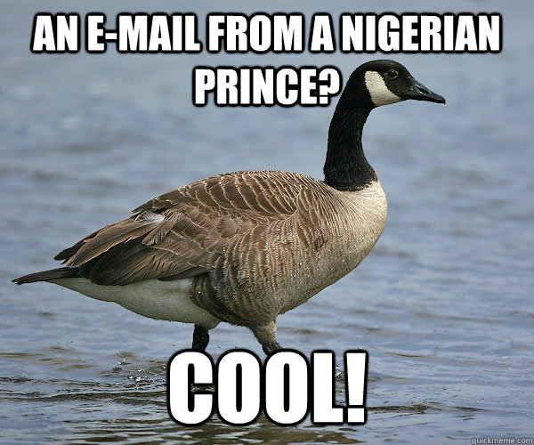 An e-mail from a nigerian prince? Cool! - An e-mail from a nigerian prince? Cool!  Gullible Goose