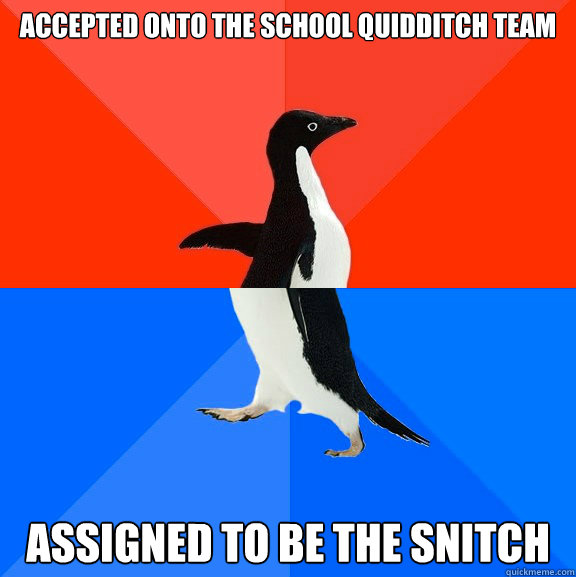 accepted onto the school Quidditch Team assigned to be the snitch - accepted onto the school Quidditch Team assigned to be the snitch  Socially Awesome Awkward Penguin