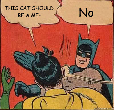 THIS CAT SHOULD BE A ME- No - THIS CAT SHOULD BE A ME- No  Batman Slapping Robin