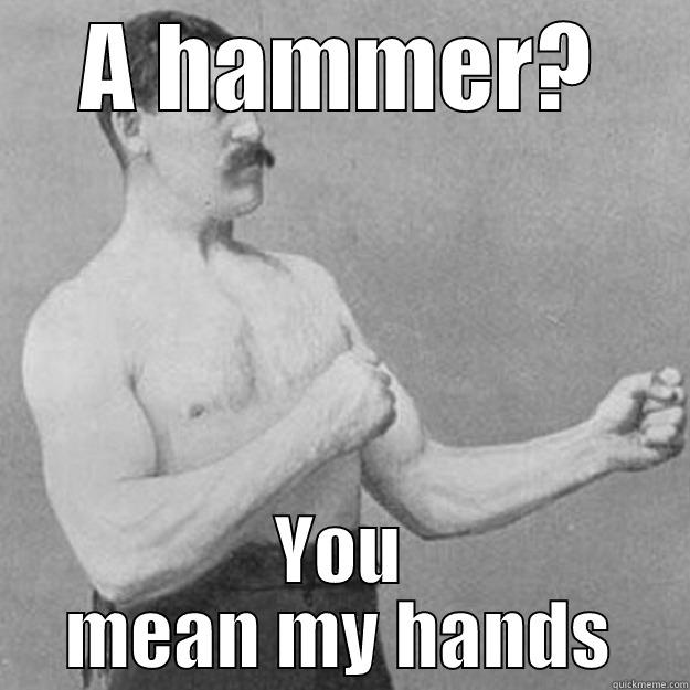 A HAMMER? YOU MEAN MY HANDS overly manly man