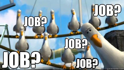 Job? Job? Job? Job? Job? - Job? Job? Job? Job? Job?  Scumbag seagull