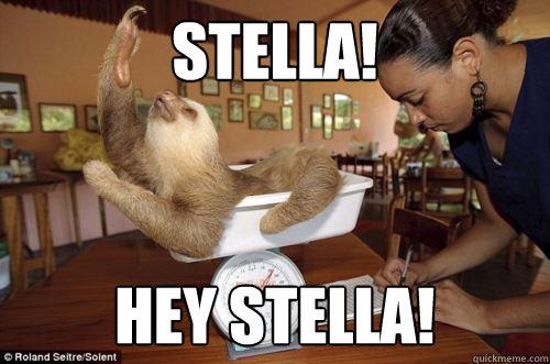 945915b035eb1534dd90fd2c20f314eb73cbff41722b84a990e55c8cc1132e8b stella! hey stella! dramatic sloth quickmeme