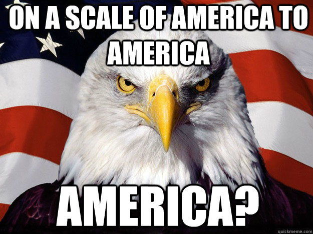 on a scale of america to america america? - on a scale of america to america america?  Patriotic Eagle