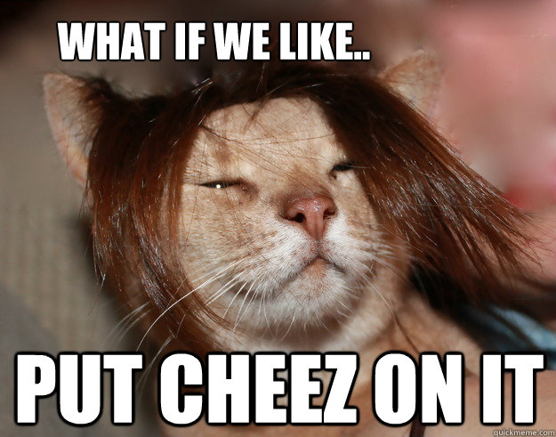 What if we like.. Put cheez on it - What if we like.. Put cheez on it  Stoner Cat