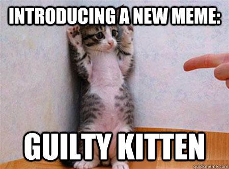 introducing a new meme: guilty kitten