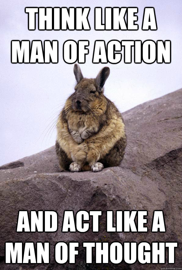 Think like a man of action and act like a man of thought  Wise Wondering Viscacha
