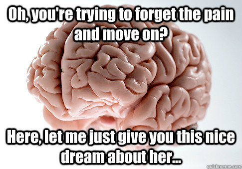 Oh, you're trying to forget the pain and move on? Here, let me just give you this nice dream about her... - Oh, you're trying to forget the pain and move on? Here, let me just give you this nice dream about her...  Scumbag Brain