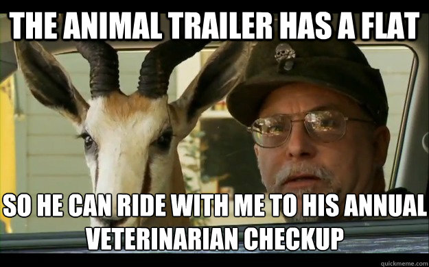 The animal trailer has a flat So he can ride with me to his annual veterinarian checkup