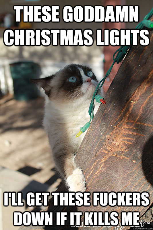 These goddamn Christmas Lights I'll get these fuckers down if it kills me - These goddamn Christmas Lights I'll get these fuckers down if it kills me  Grumpy Cat is Over Christmas