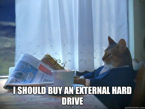 I should buy an external hard drive -  I should buy an external hard drive  The One Percent Cat