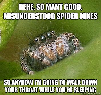 hehe, so many good, misunderstood spider jokes so anyhow i'm going to walk down your throat while you're sleeping - hehe, so many good, misunderstood spider jokes so anyhow i'm going to walk down your throat while you're sleeping  Misunderstood Spider