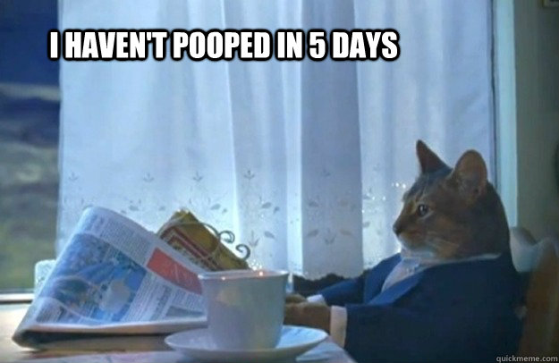 I haven't pooped in 5 days - I haven't pooped in 5 days  Sophisticated Cat