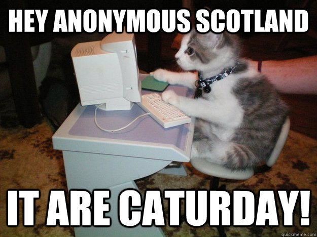 hey anonymous scotland it are caturday!