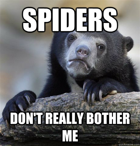 spiders don't really bother me - spiders don't really bother me  Confession Bear