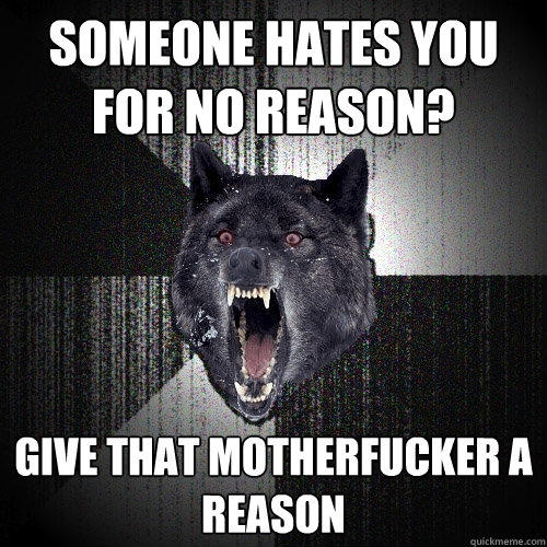 someone hates you for no reason? give that motherfucker a reason - someone hates you for no reason? give that motherfucker a reason  Insanity Wolf