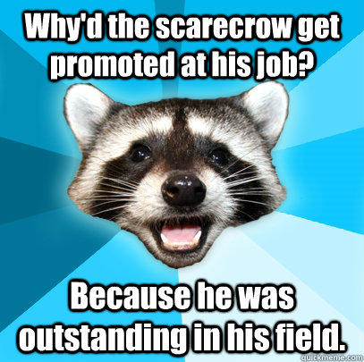 Why'd the scarecrow get promoted at his job? Because he was outstanding in his field.  Lame Pun Coon
